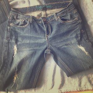 Ariya Bootcut Jeans